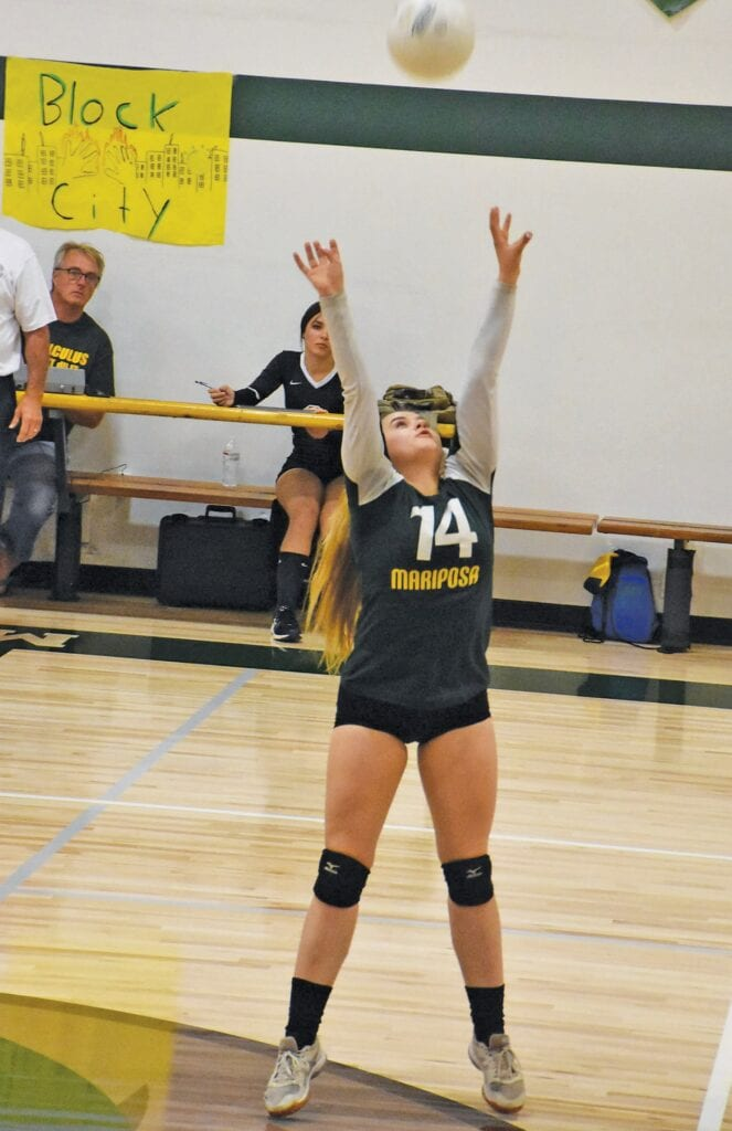 Reyna Mero became a strong setter for the Grizzly team. Photo by Matt Johnson